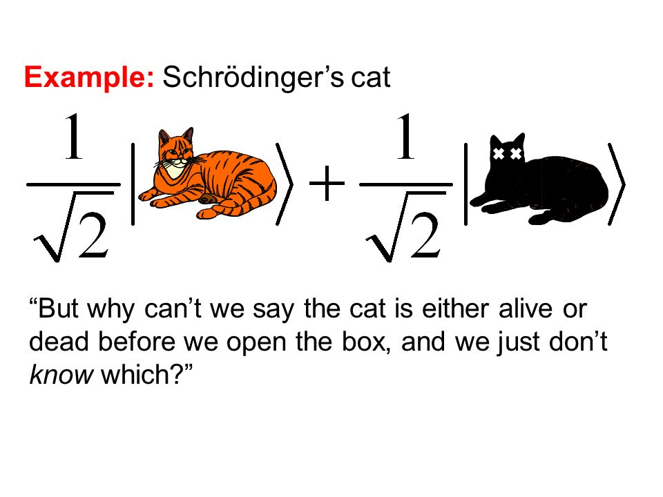Example: Schrödingers cat But why cant we say the cat is either alive or dead before we open the box, and we just dont know which?