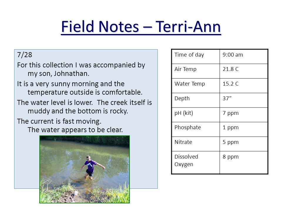Field Notes – Terri-Ann 7/28 For this collection I was accompanied by my son, Johnathan.
