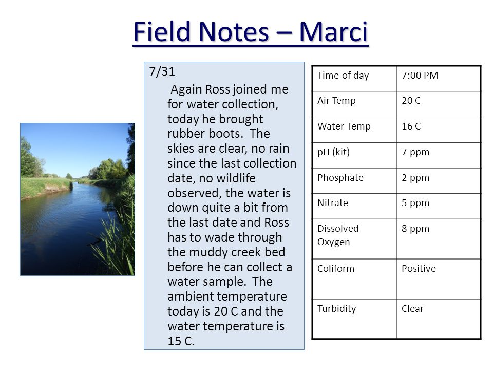 Field Notes – Marci 7/31 Again Ross joined me for water collection, today he brought rubber boots.