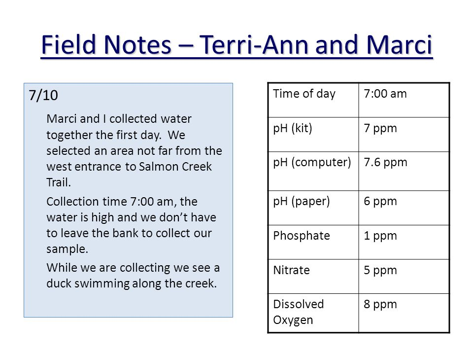 Field Notes – Terri-Ann and Marci 7/10 Marci and I collected water together the first day.