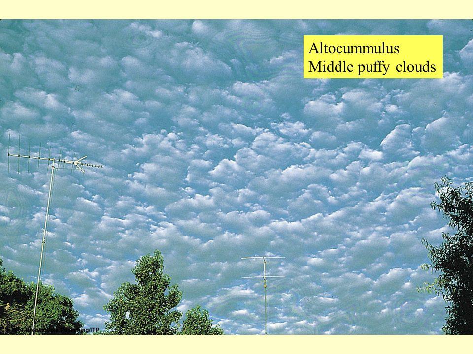Altocummulus Middle puffy clouds
