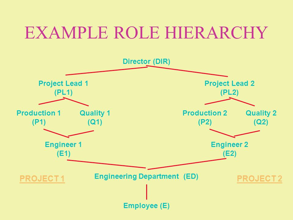 EXAMPLE ROLE HIERARCHY Employee (E) Engineering Department (ED) Project Lead 1 (PL1) Engineer 1 (E1) Production 1 (P1) Quality 1 (Q1) Director (DIR) P