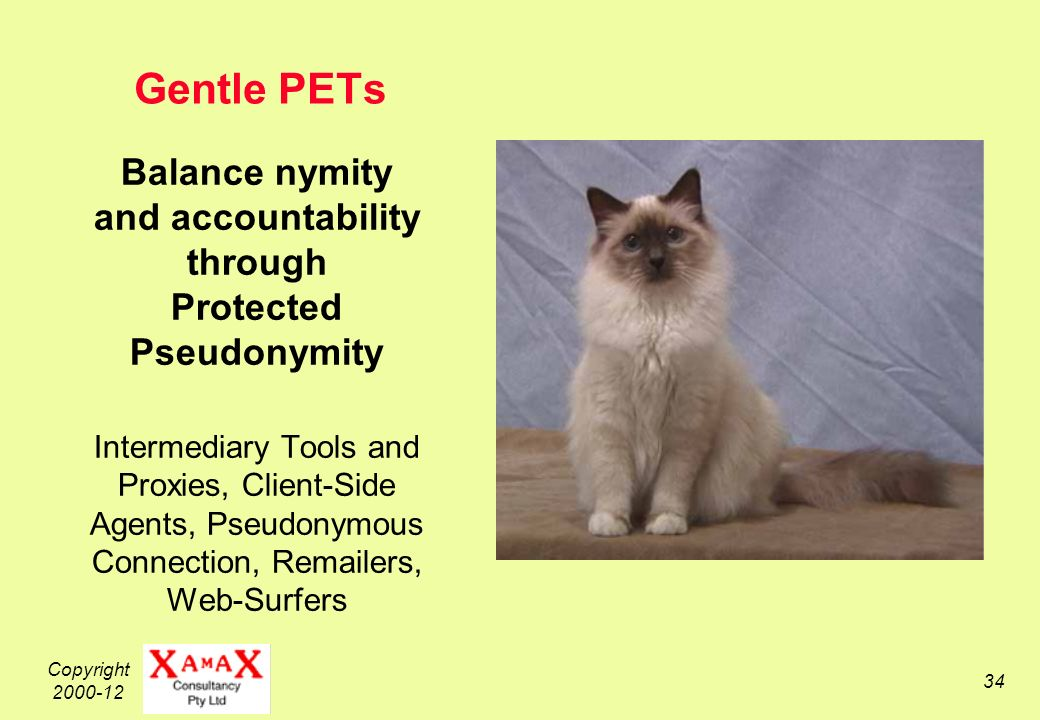 Copyright 2000-12 34 Gentle PETs Balance nymity and accountability through Protected Pseudonymity Intermediary Tools and Proxies, Client-Side Agents, Pseudonymous Connection, Remailers, Web-Surfers