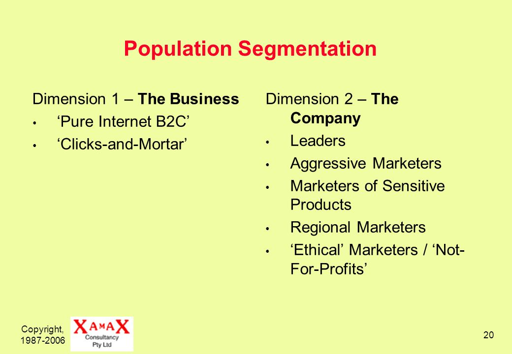 Copyright, 1987-2006 20 Population Segmentation Dimension 1 – The Business Pure Internet B2C Clicks-and-Mortar Dimension 2 – The Company Leaders Aggre