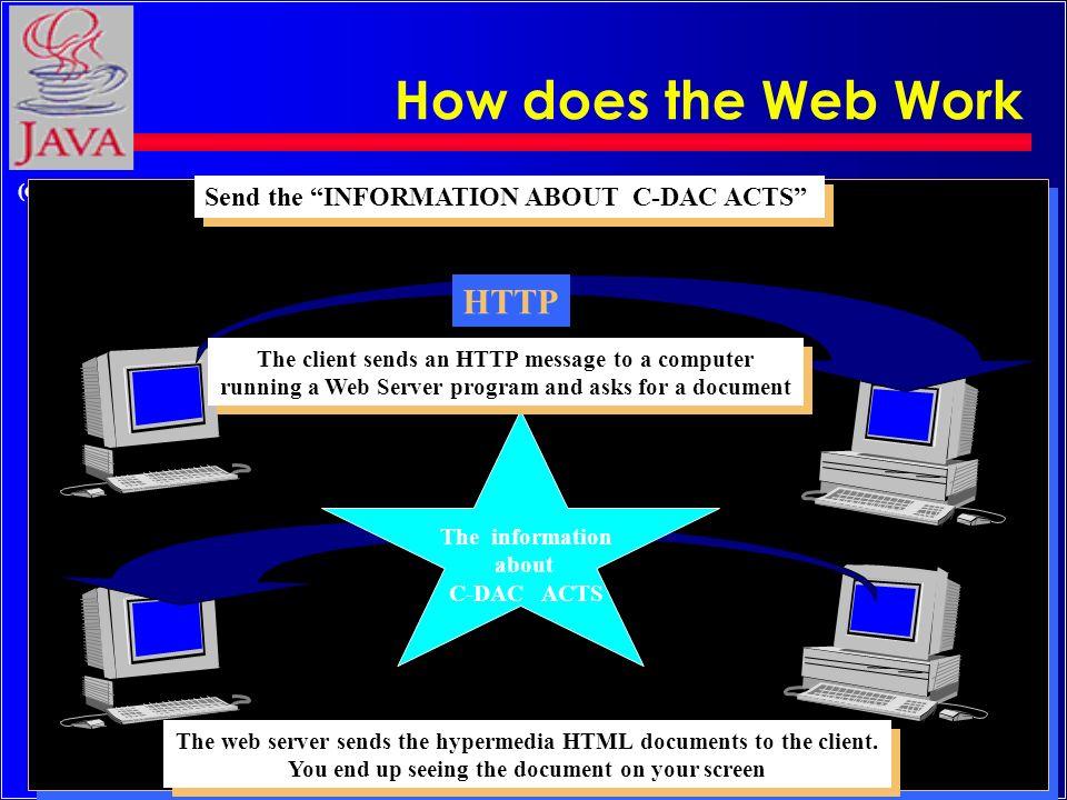 11 (c) Rajkumar How does the Web work .