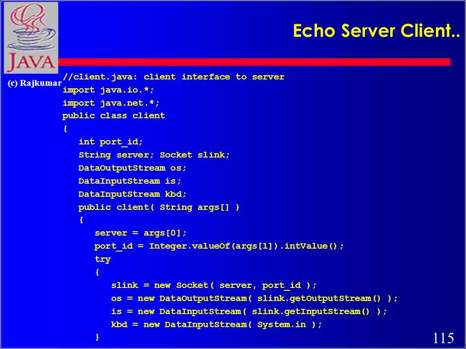 115 (c) Rajkumar Echo Server Client..