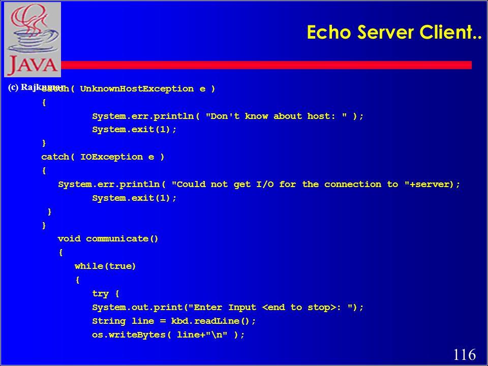 116 (c) Rajkumar Echo Server Client..