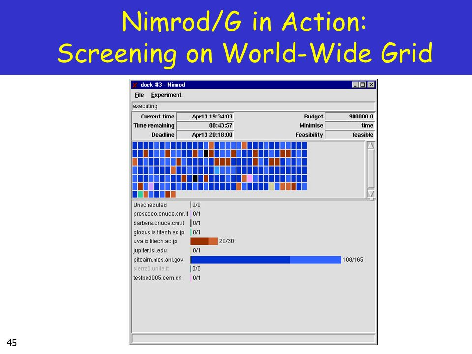 45 Nimrod/G in Action: Screening on World-Wide Grid