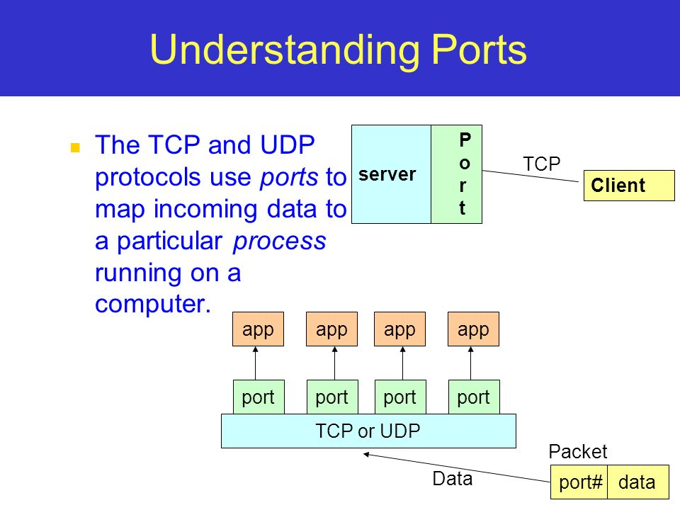 11 Understanding Ports The TCP and UDP protocols use ports to map incoming data to a particular process running on a computer. server P o r t Client T