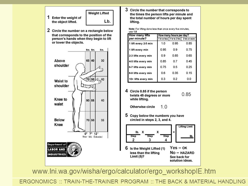 ERGONOMICS :: TRAIN-THE-TRAINER PROGRAM :: THE BACK & MATERIAL HANDLING www.lni.wa.gov/wisha/ergo/calculator/ergo_workshopIE.htm
