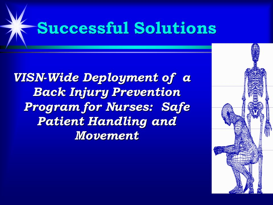 Successful Solutions VISN-Wide Deployment of a Back Injury Prevention Program for Nurses: Safe Patient Handling and Movement