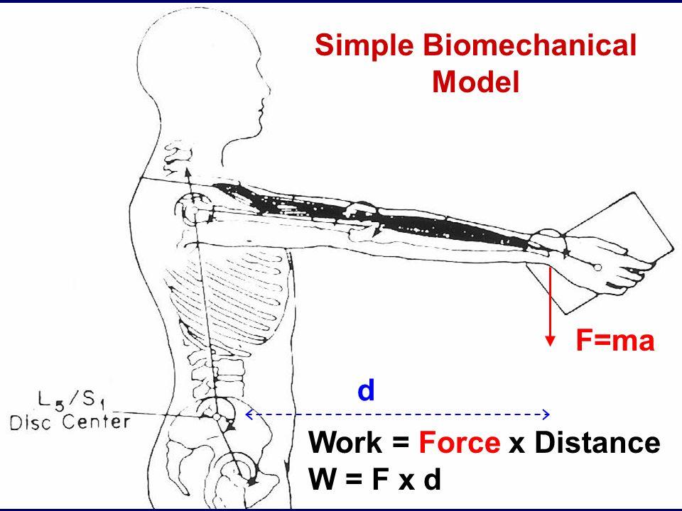 15 d F=ma Simple Biomechanical Model Work = Force x Distance W = F x d
