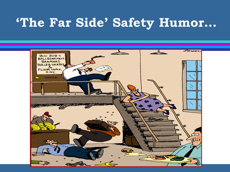 The Far Side Safety Humor…