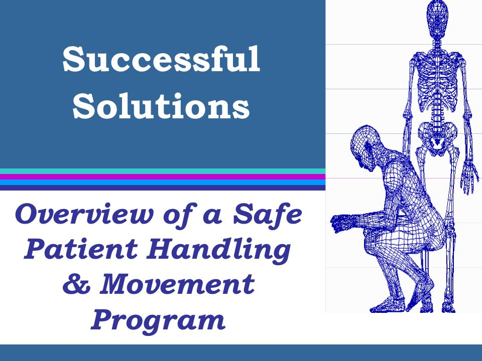 Safe Patient Handling & Movement Program Elements Back Injury Resource Nurses Chapter 7