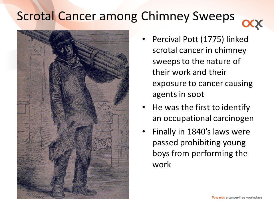 Scrotal Cancer among Chimney Sweeps Percival Pott (1775) linked scrotal cancer in chimney sweeps to the nature of their work and their exposure to cancer causing agents in soot He was the first to identify an occupational carcinogen Finally in 1840s laws were passed prohibiting young boys from performing the work