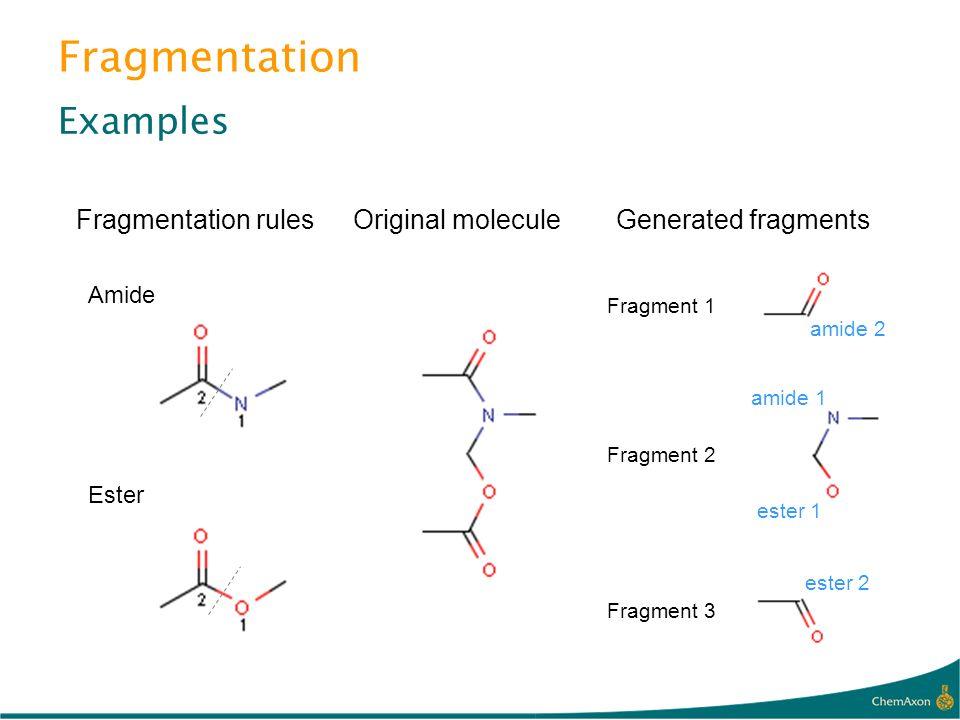 Fragmentation Examples Fragmentation rules Amide Original moleculeGenerated fragments Fragment 1 amide 2 Fragment 2 amide 1 ester 1 Ester Fragment 3 e