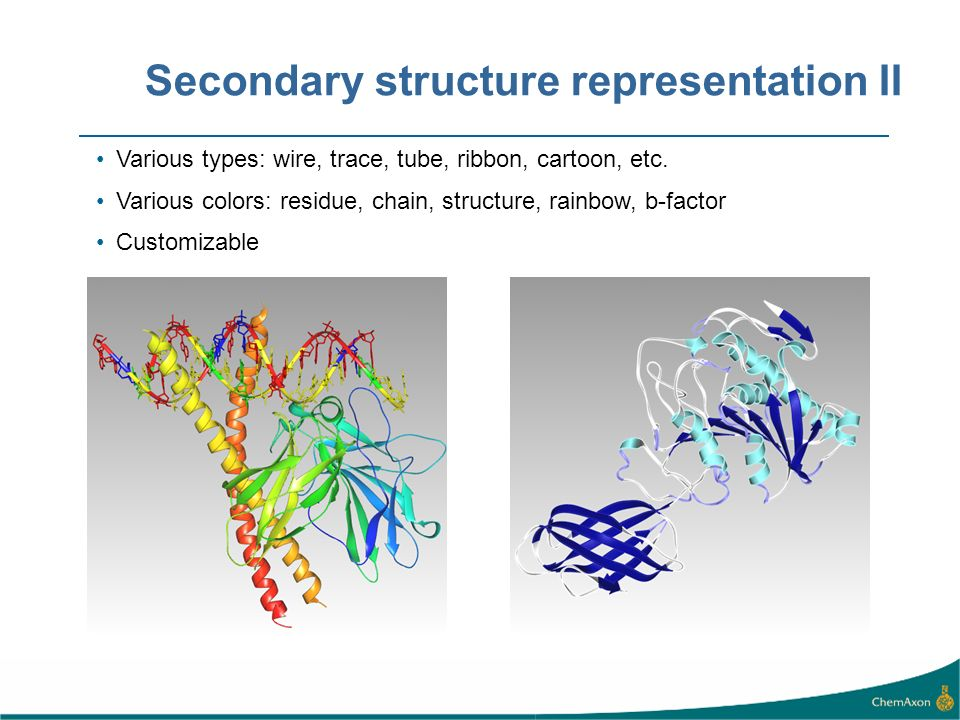 Secondary structure representation II Various types: wire, trace, tube, ribbon, cartoon, etc.