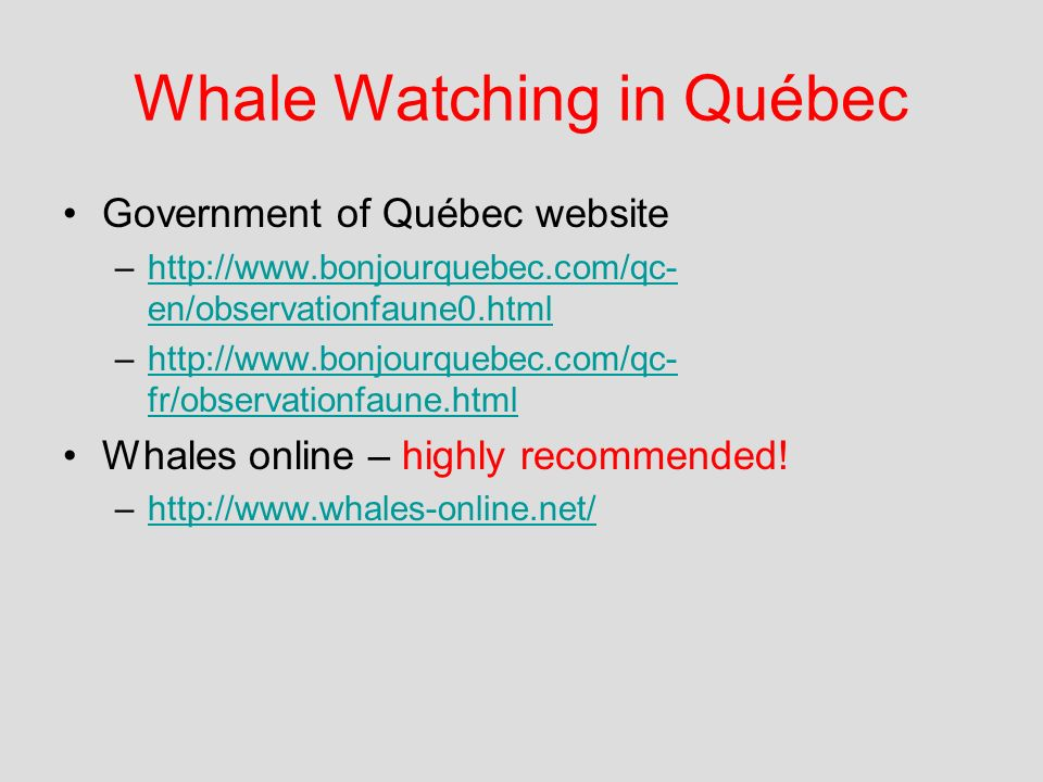 Whale Watching in Québec Government of Québec website –http://www.bonjourquebec.com/qc- en/observationfaune0.htmlhttp://www.bonjourquebec.com/qc- en/observationfaune0.html –http://www.bonjourquebec.com/qc- fr/observationfaune.htmlhttp://www.bonjourquebec.com/qc- fr/observationfaune.html Whales online – highly recommended.