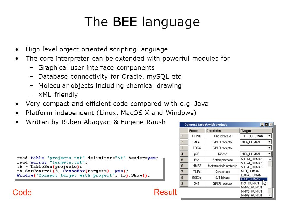 The BEE language High level object oriented scripting language The core interpreter can be extended with powerful modules for –Graphical user interface components –Database connectivity for Oracle, mySQL etc –Molecular objects including chemical drawing –XML-friendly Very compact and efficient code compared with e.g.