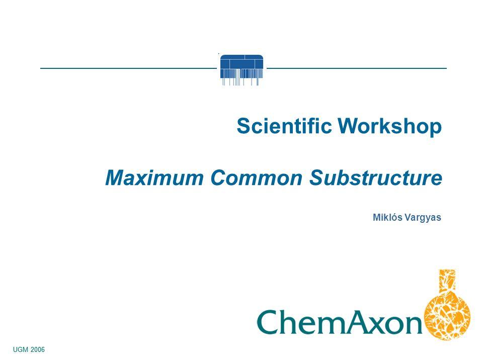 UGM 2006 Miklós Vargyas Scientific Workshop Maximum Common Substructure