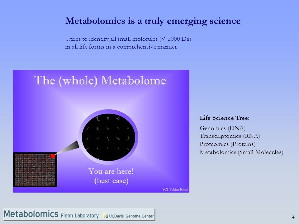 4 Metabolomics is a truly emerging science...tries to identify all small molecules (< 2000 Da) in all life forms in a comprehensive manner Life Science Tree: Genomics (DNA) Transcriptomics (RNA) Proteomics (Proteins) Metabolomics (Small Molecules)