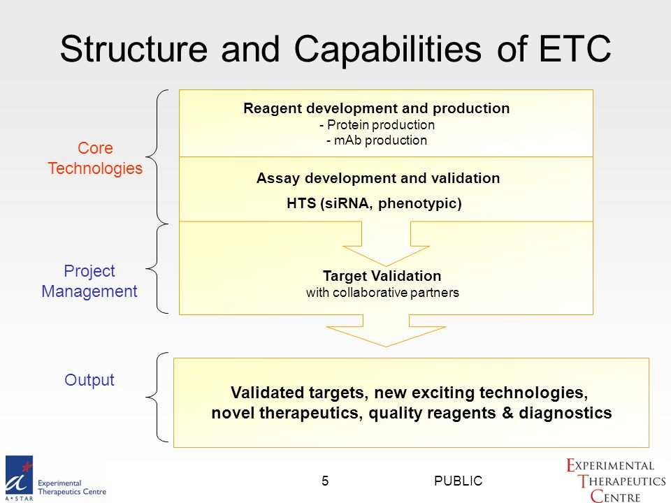 PUBLIC5 Structure and Capabilities of ETC Target Validation with collaborative partners Assay development and validation Reagent development and production - Protein production - mAb production Core Technologies Project Management HTS (siRNA, phenotypic) Validated targets, new exciting technologies, novel therapeutics, quality reagents & diagnostics Output