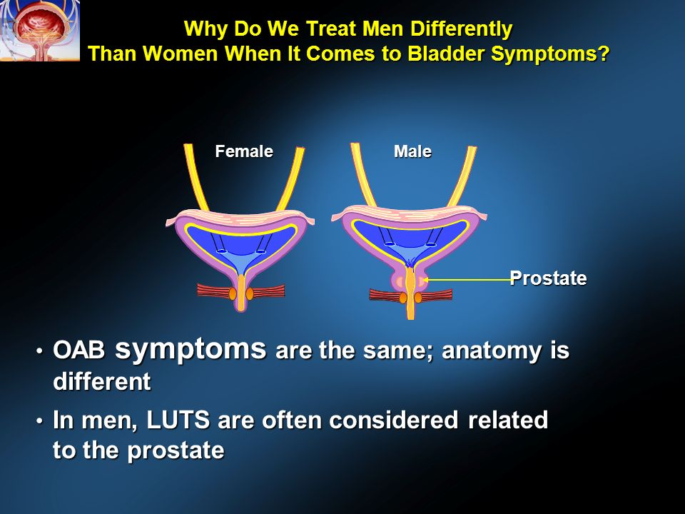 Why Do We Treat Men Differently Than Women When It Comes to Bladder Symptoms.