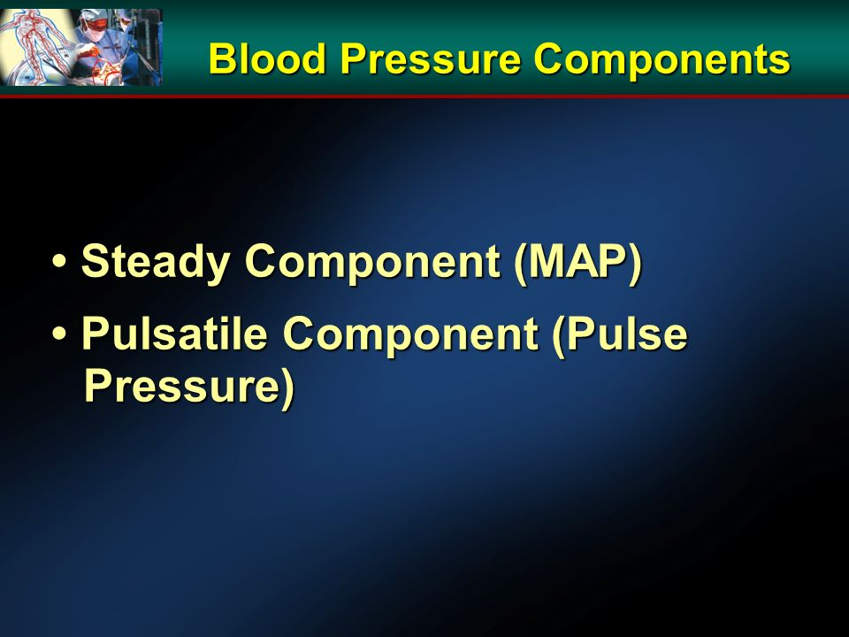Blood Pressure Components Steady Component (MAP) Steady Component (MAP) Pulsatile Component (Pulse Pressure) Pulsatile Component (Pulse Pressure)
