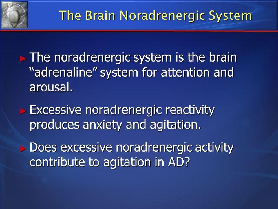 The Brain Noradrenergic System The noradrenergic system is the brain adrenaline system for attention and arousal. The noradrenergic system is the brai