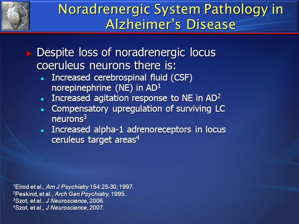 Noradrenergic System Pathology in Alzheimers Disease Despite loss of noradrenergic locus coeruleus neurons there is: Despite loss of noradrenergic loc