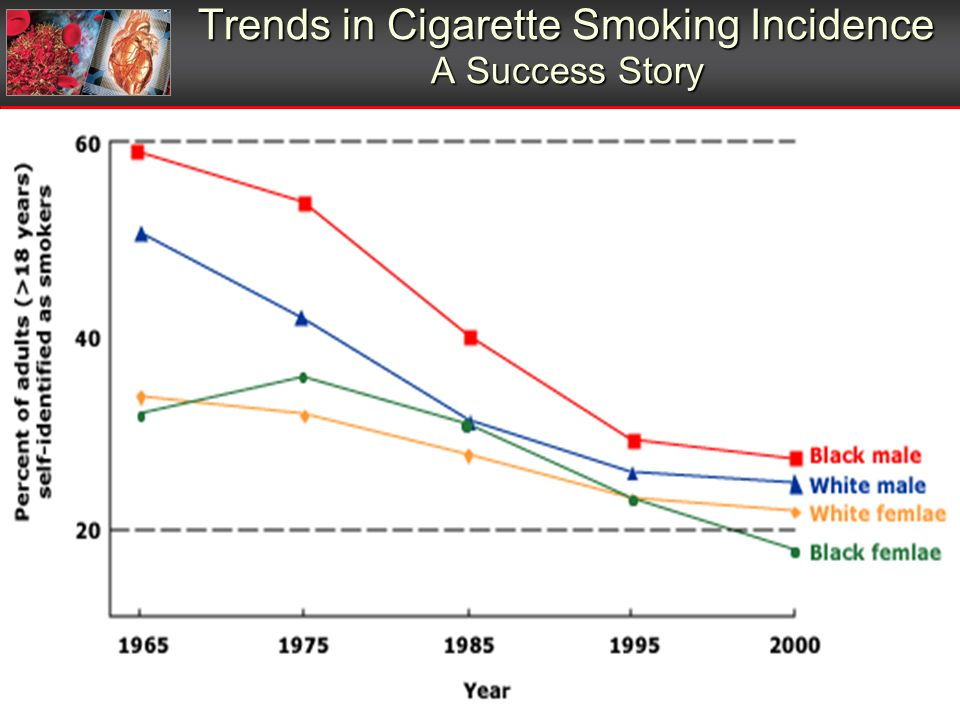 Trends in Cigarette Smoking Incidence A Success Story