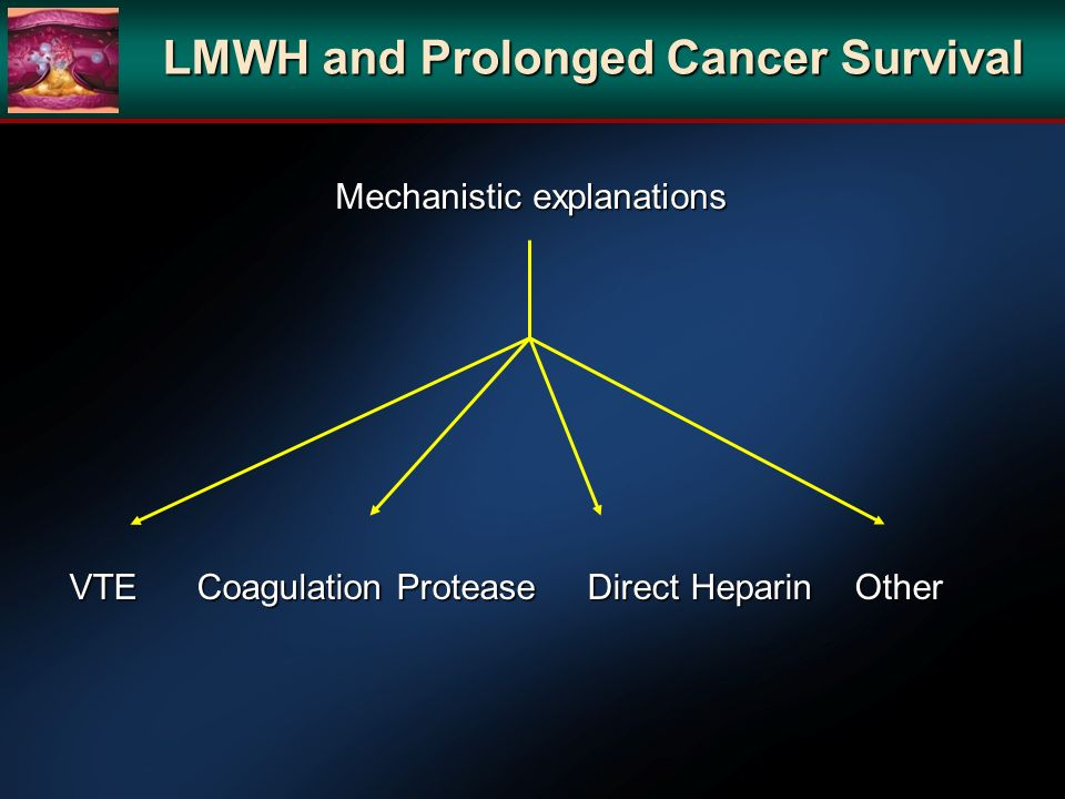 Mechanistic explanations VTE Coagulation Protease Direct Heparin Other LMWH and Prolonged Cancer Survival