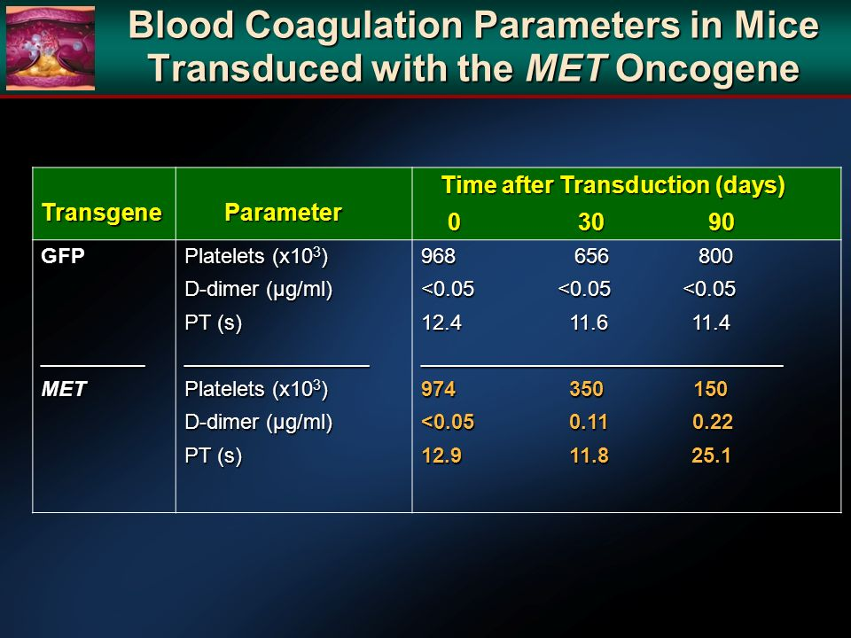 Blood Coagulation Parameters in Mice Transduced with the MET Oncogene Transgene Parameter Parameter Time after Transduction (days) Time after Transduction (days) 0 30 90 0 30 90 GFP_________MET Platelets (x10 3 ) D-dimer (µg/ml) PT (s) ________________ Platelets (x10 3 ) D-dimer (µg/ml) PT (s) 968 656 800 <0.05 <0.05 <0.05 12.4 11.6 11.4 _______________________________ 974 350 150 <0.05 0.11 0.22 12.9 11.8 25.1