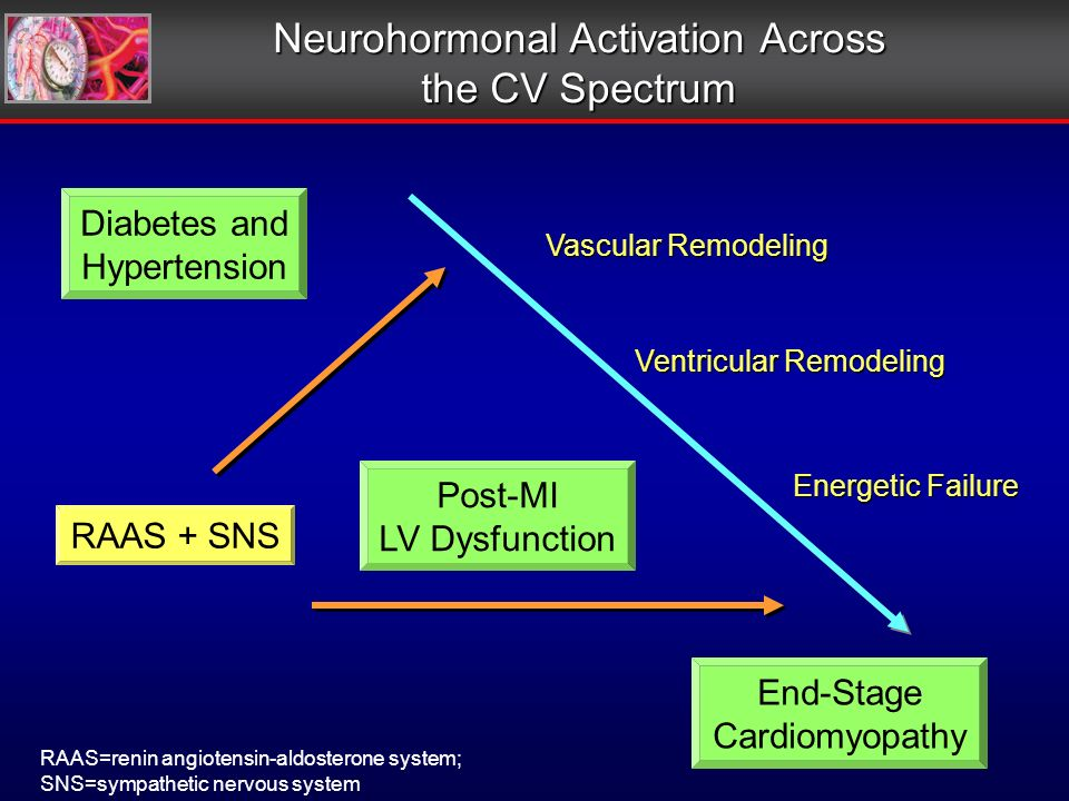 Ventricular Remodeling Vascular Remodeling Energetic Failure Neurohormonal Activation Across the CV Spectrum RAAS=renin angiotensin-aldosterone system; SNS=sympathetic nervous system Diabetes and Hypertension Post-MI LV Dysfunction End-Stage Cardiomyopathy RAAS + SNS