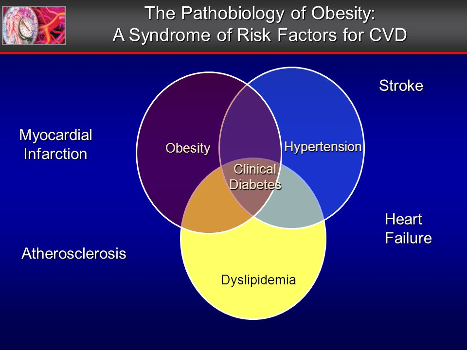 The Pathobiology of Obesity: A Syndrome of Risk Factors for CVD Myocardial Infarction Infarction Stroke HeartFailure Atherosclerosis Obesity Hypertension Dyslipidemia ClinicalDiabetes