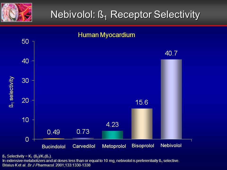 ß 1 selectivity Human Myocardium Bucindolol Carvedilol Metoprolol Bisoprolol Nebivolol ß 1 Selectivity = K 1 (ß 2 )/K 1 (ß 1 ).