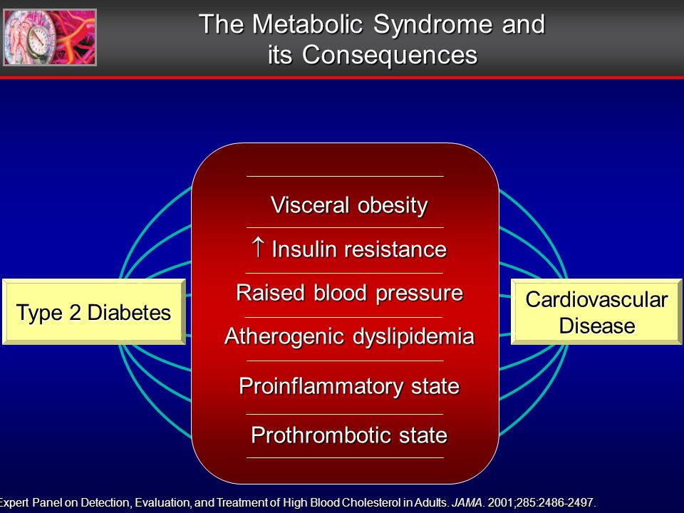 Visceral obesity Insulin resistance Insulin resistance Raised blood pressure Atherogenic dyslipidemia Proinflammatory state Prothrombotic state The Metabolic Syndrome and its Consequences Type 2 Diabetes CardiovascularDisease Expert Panel on Detection, Evaluation, and Treatment of High Blood Cholesterol in Adults.