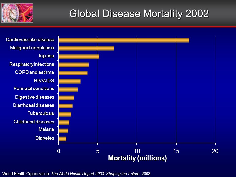 Global Disease Mortality 2002 Mortality (millions) World Health Organization.