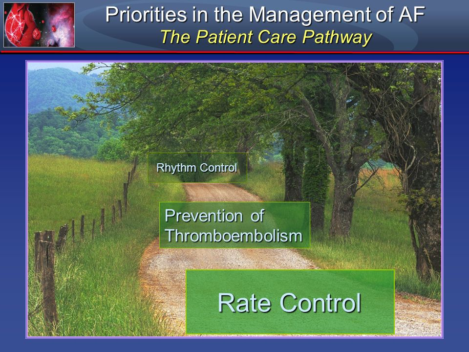 Priorities in the Management of AF The Patient Care Pathway Rhythm Control Prevention of Thromboembolism Rate Control