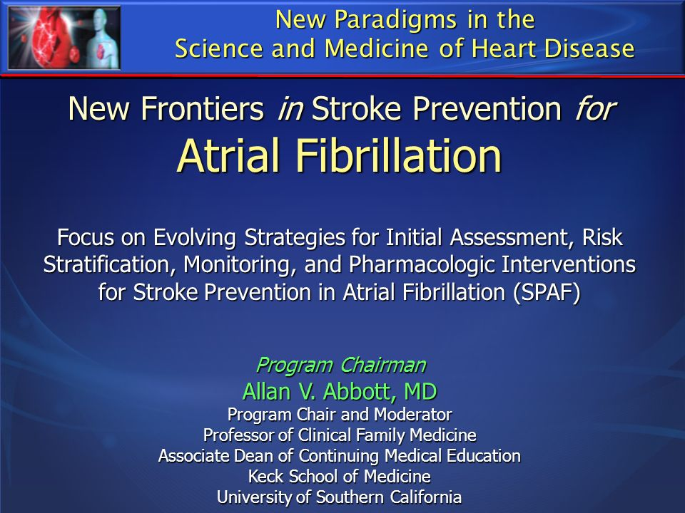 New Frontiers in Stroke Prevention for Atrial Fibrillation Focus on Evolving Strategies for Initial Assessment, Risk Stratification, Monitoring, and P