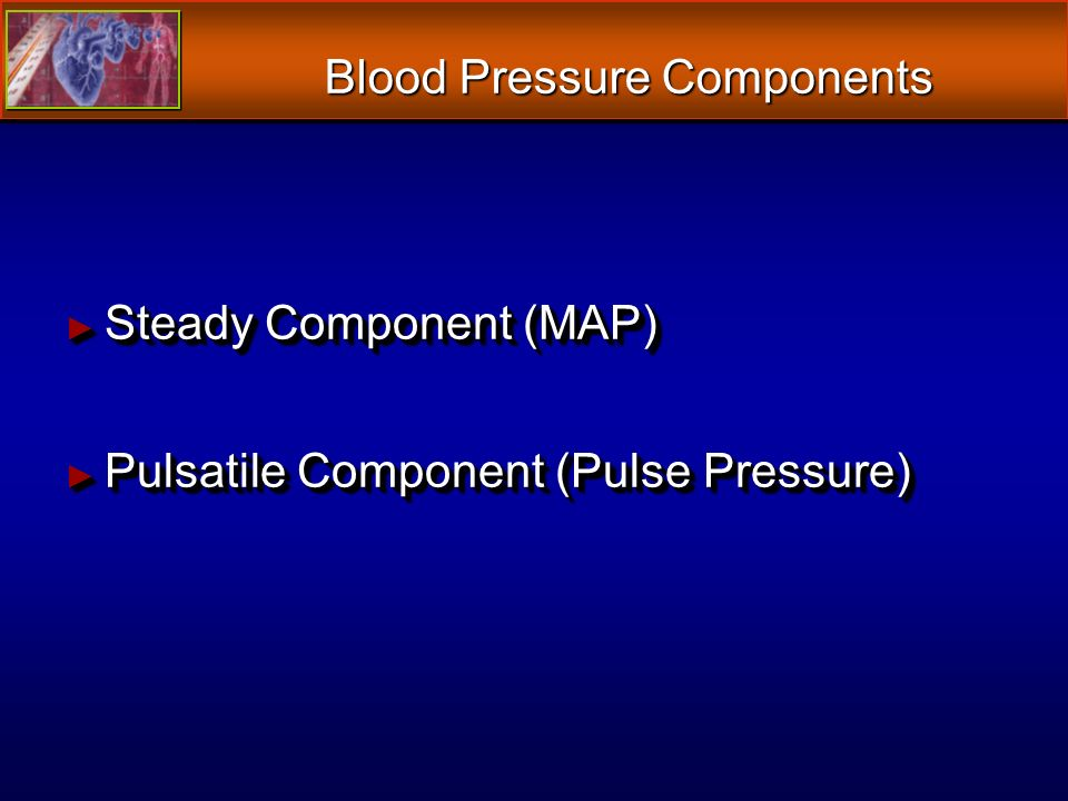Blood Pressure Components Steady Component (MAP) Steady Component (MAP) Pulsatile Component (Pulse Pressure) Pulsatile Component (Pulse Pressure) Steady Component (MAP) Steady Component (MAP) Pulsatile Component (Pulse Pressure) Pulsatile Component (Pulse Pressure)
