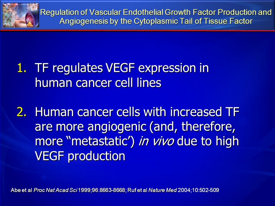 Regulation of Vascular Endothelial Growth Factor Production and Angiogenesis by the Cytoplasmic Tail of Tissue Factor 1.TF regulates VEGF expression i