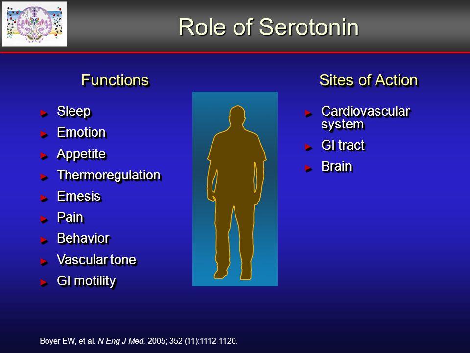 Role of Serotonin Functions Sleep Sleep Emotion Emotion Appetite Appetite Thermoregulation Thermoregulation Emesis Emesis Pain Pain Behavior Behavior Vascular tone Vascular tone GI motility GI motilityFunctions Sleep Sleep Emotion Emotion Appetite Appetite Thermoregulation Thermoregulation Emesis Emesis Pain Pain Behavior Behavior Vascular tone Vascular tone GI motility GI motility Sites of Action Cardiovascular system Cardiovascular system GI tract GI tract Brain Brain Sites of Action Cardiovascular system Cardiovascular system GI tract GI tract Brain Brain Boyer EW, et al.