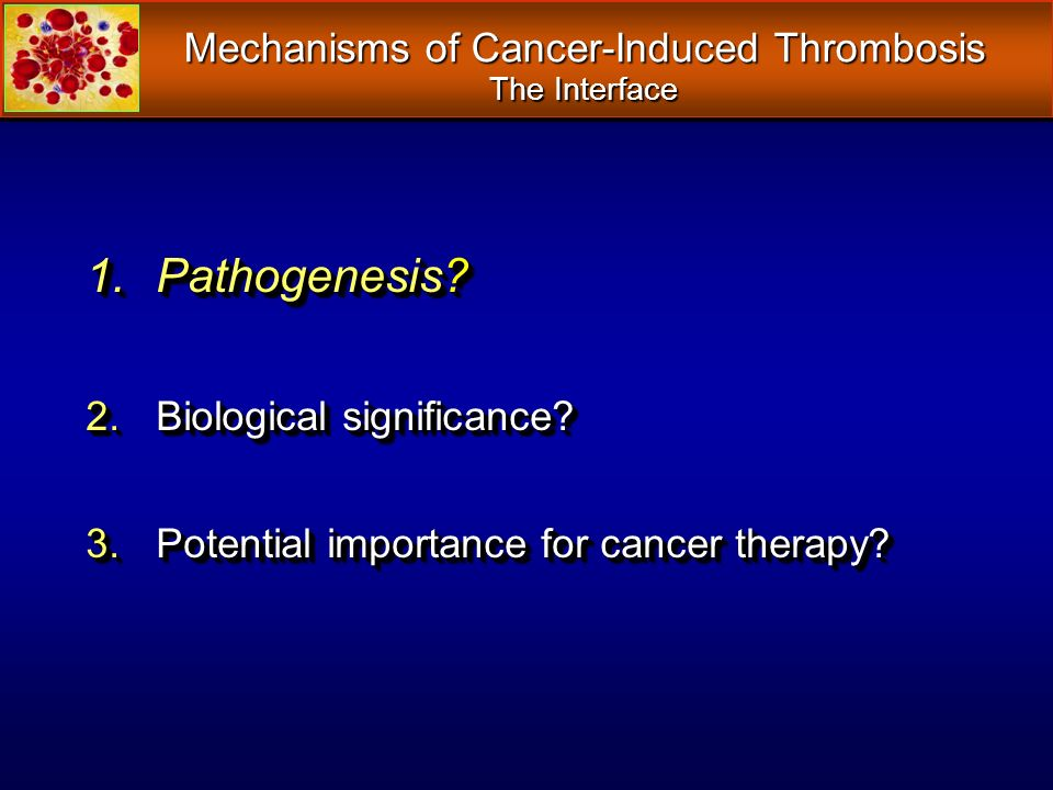 Mechanisms of Cancer-Induced Thrombosis The Interface 1.Pathogenesis? 2.Biological significance? 3.Potential importance for cancer therapy? 1.Pathogen