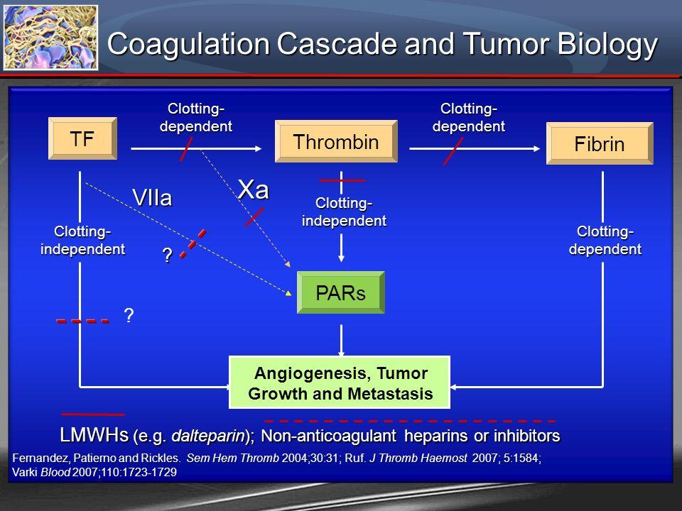 Coagulation Cascade and Tumor Biology Clotting- dependent Clotting- independent Clotting- dependent Clotting- independent Fernandez, Patierno and Rick