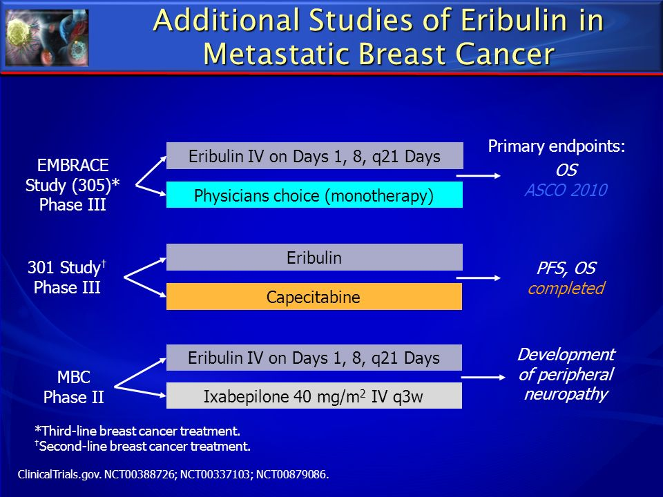 Additional Studies of Eribulin in Metastatic Breast Cancer EMBRACE Study (305)* Phase III Eribulin IV on Days 1, 8, q21 Days Physicians choice (monoth