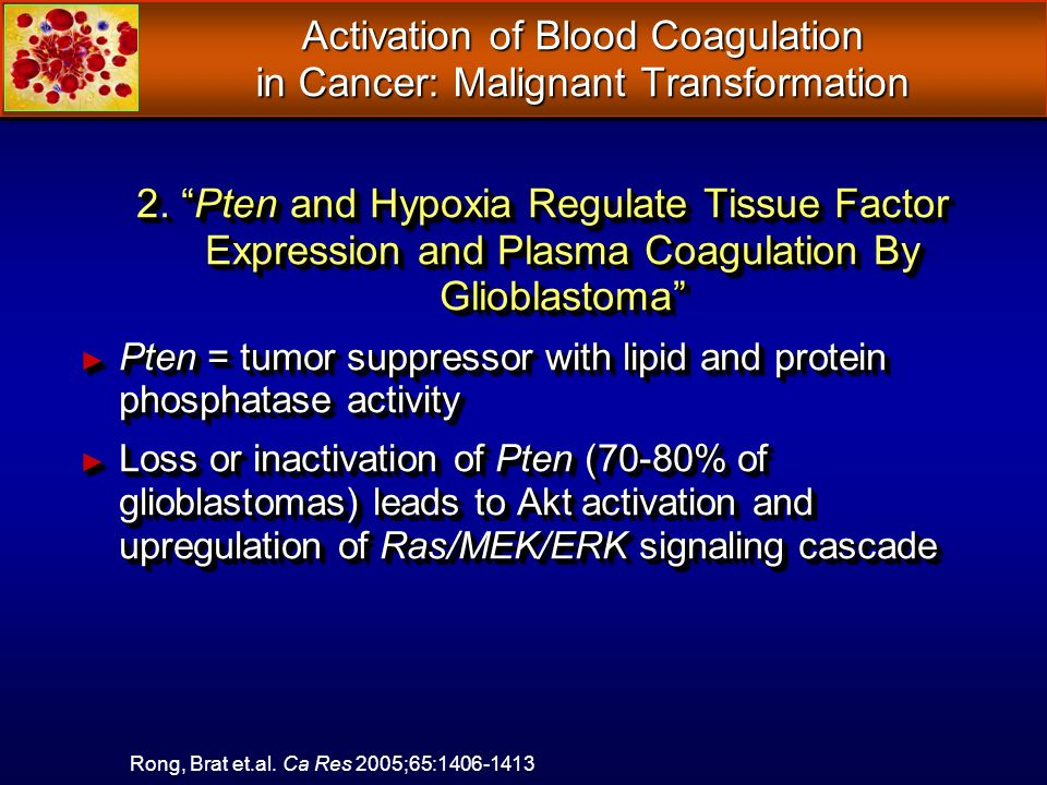 Activation of Blood Coagulation in Cancer: Malignant Transformation 2.