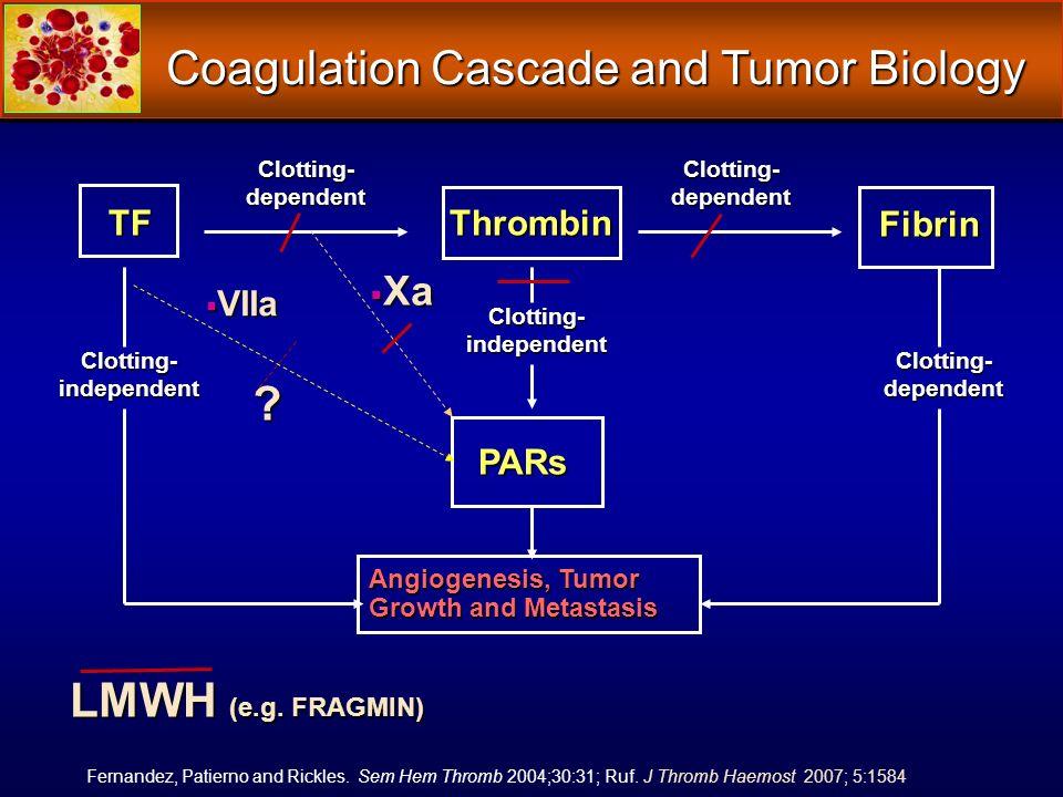 Coagulation Cascade and Tumor Biology TFThrombin Clotting- dependent Clotting- independent Clotting- dependent Fibrin Clotting- independent PARs Ferna