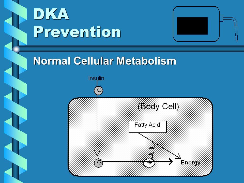DKA Prevention Normal Cellular Metabolism Normal Cellular Metabolism