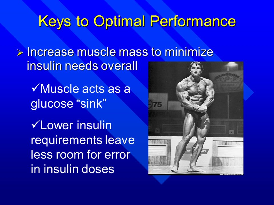 Keys to Optimal Performance Increase muscle mass to minimize insulin needs overall Increase muscle mass to minimize insulin needs overall Muscle acts